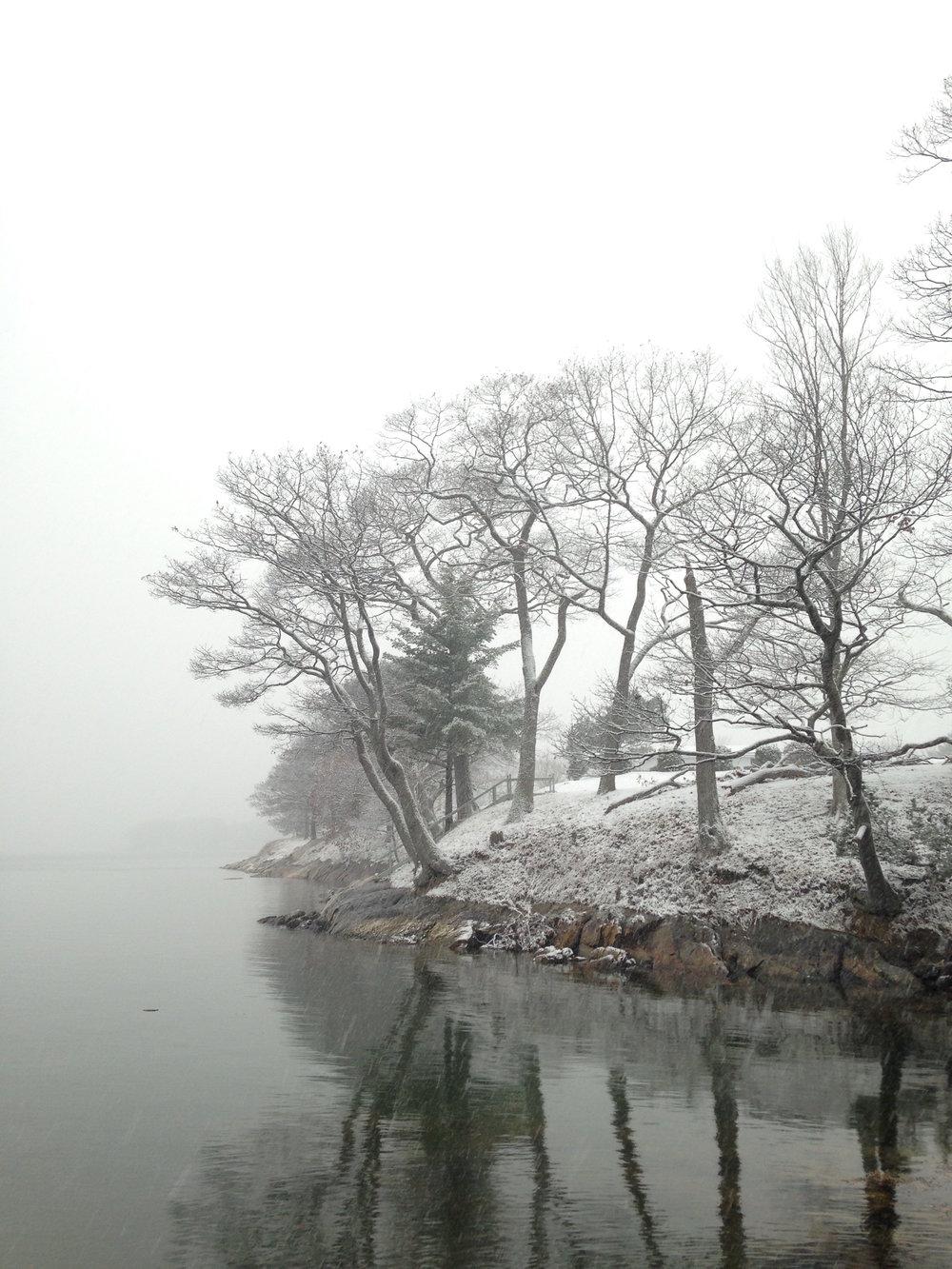 snowy coast.jpg