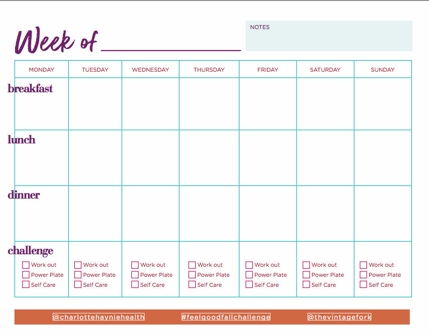 Weekly tracker designed by Caitlin that is in every starter kit!
