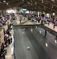 AKC Website Events Page 4 - 1.jpg
