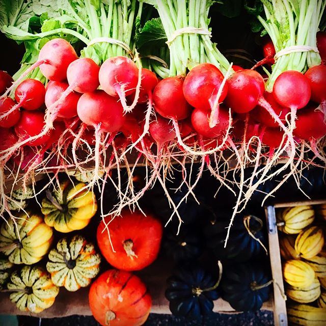 feels like #fall @yanceycountyfarmersmarket @ashevillecitymarket