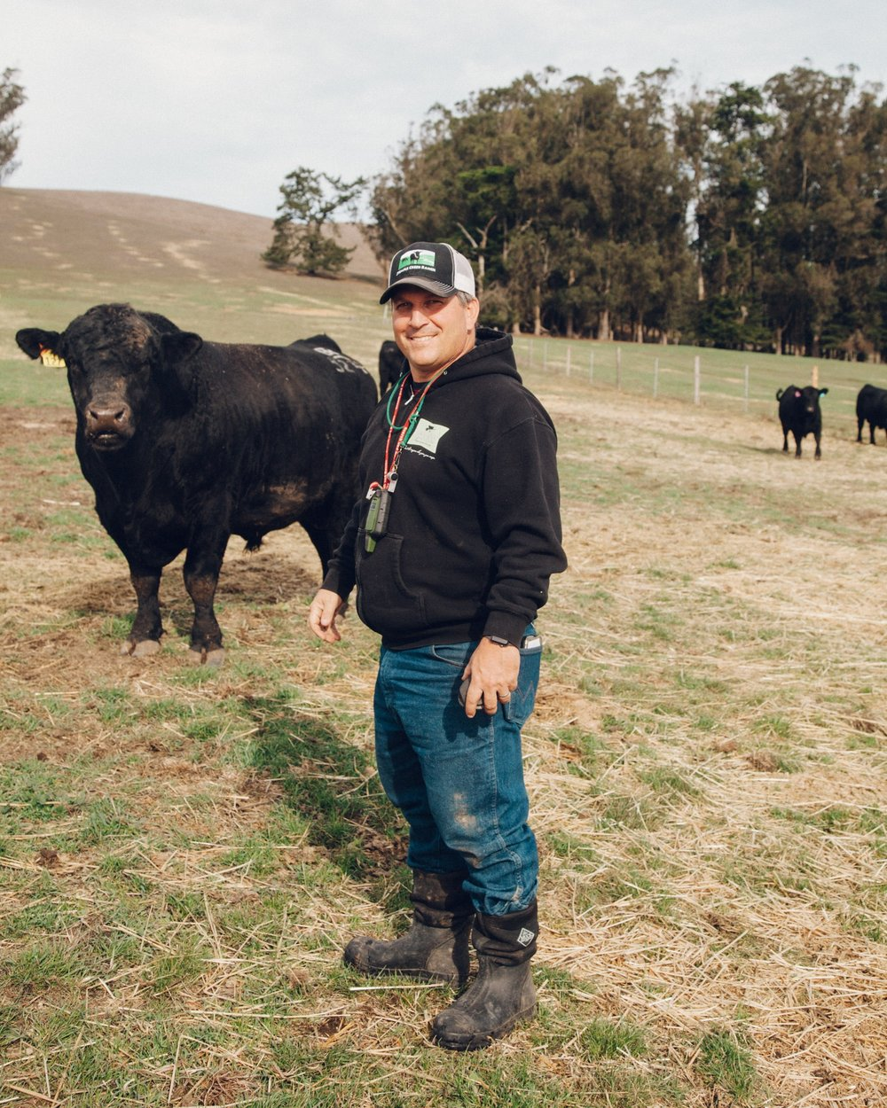 Loren with one of the bulls.