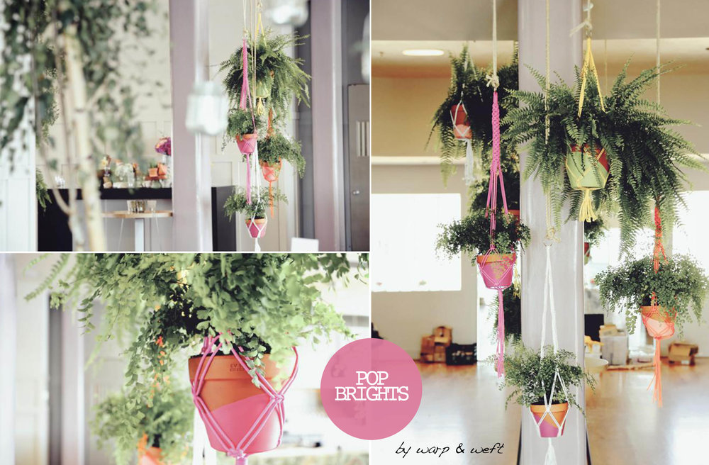 This Macrame range are designed to be hang as a cluster of bright and cheerful plant hangers. They come in one size and are great for small or larger spaces.The collection comes in arrange of 4 colour, each coming a their own terracotta pot. The pot is half painted with an accent colour to match the macrame cord.