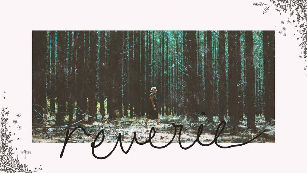 'reverie' Musician rebrand cover photo