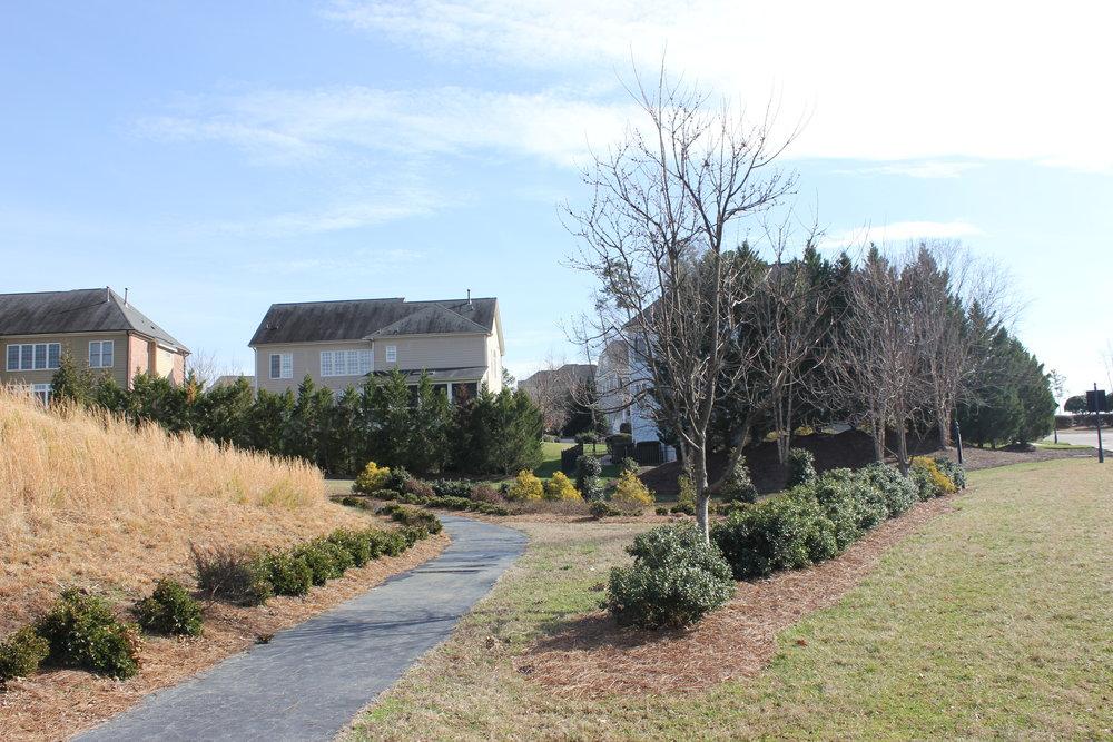Cameron Pond Pond Trail.JPG