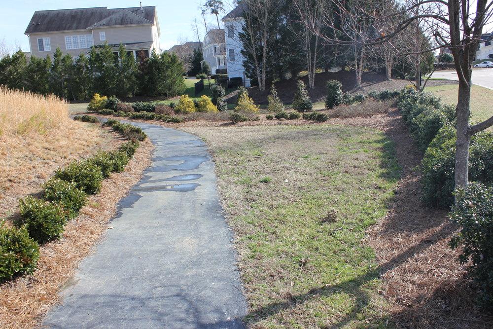 Cameron Pond Pond Trail 2.JPG