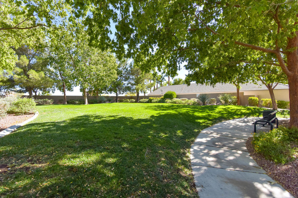 3259 Dragoon Springs St Las-large-029-18-COMMUNITY PARK-1499x1000-72dpi.jpg