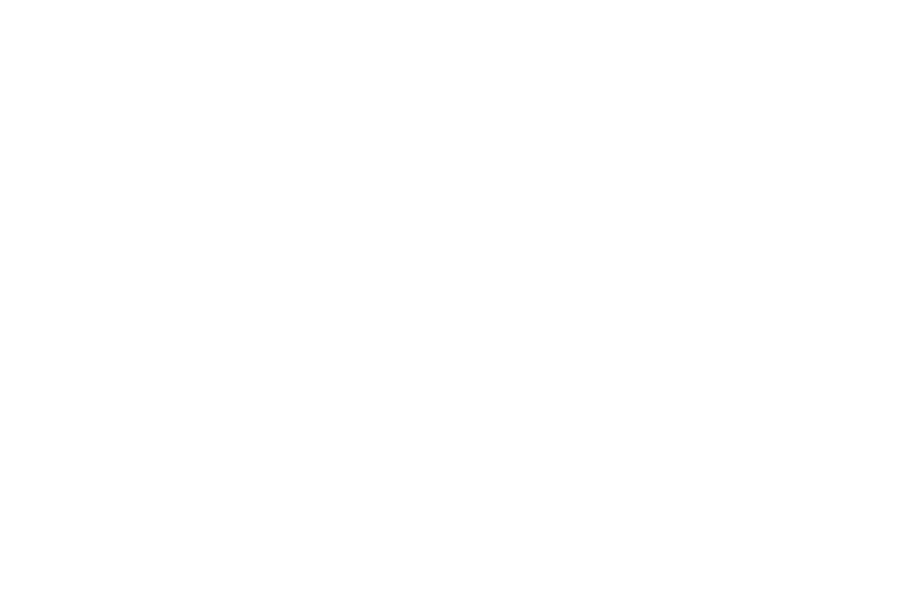 OFFICIAL SELECTION - Rome Elephant Film Awards - 2018.png