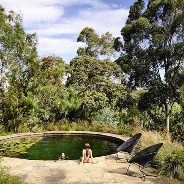 Dear Santa. A natural swimming pool in our backyard for Christmas please! Would have come in handy today that's for sure. Design by @samcoxlandscape pool by @naturalswimmingpools #garden #gardening #gardendesign #gardenlove #gardenlovers #landscape #landscaping #landscapedesign #landscapearchitecture #instagardeners #gardeninspo #jardin #giardini #giardino