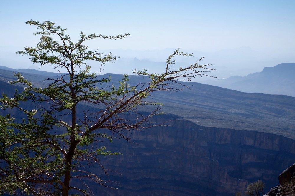 Utsikten över Wadi Nakhar