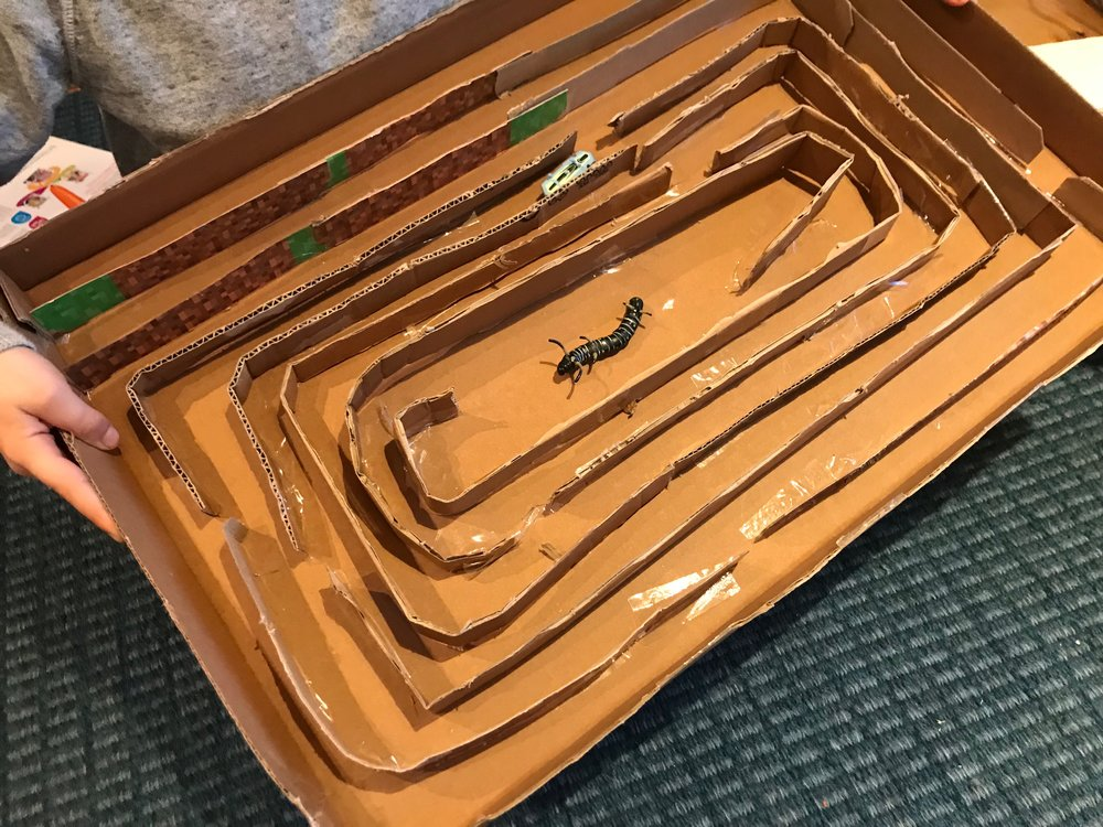 hexbug, nanobot, racetrack, maze made out of cardboard.