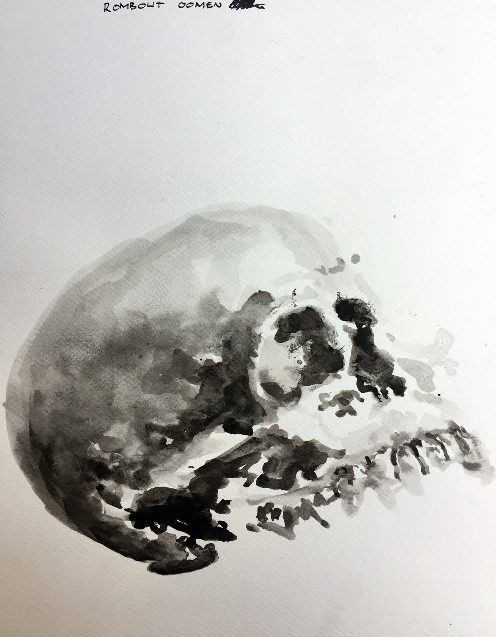 Skull Indian ink on paper 36x27 cm 2017