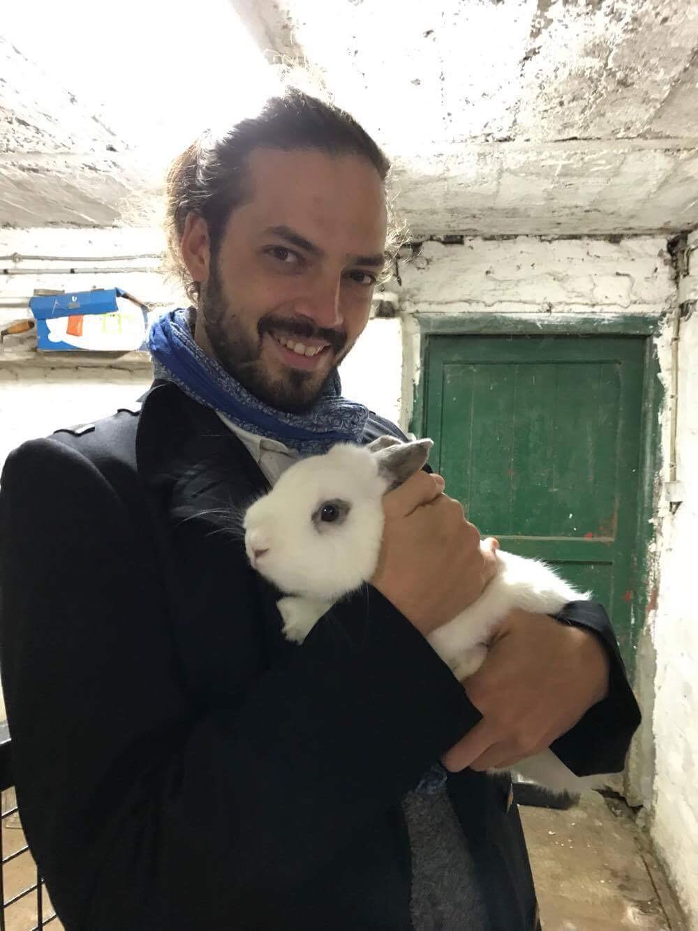 Le plus mignon des lapins est un lapin, pas un humain (mais Greg arrive deuxième, devant une poule).