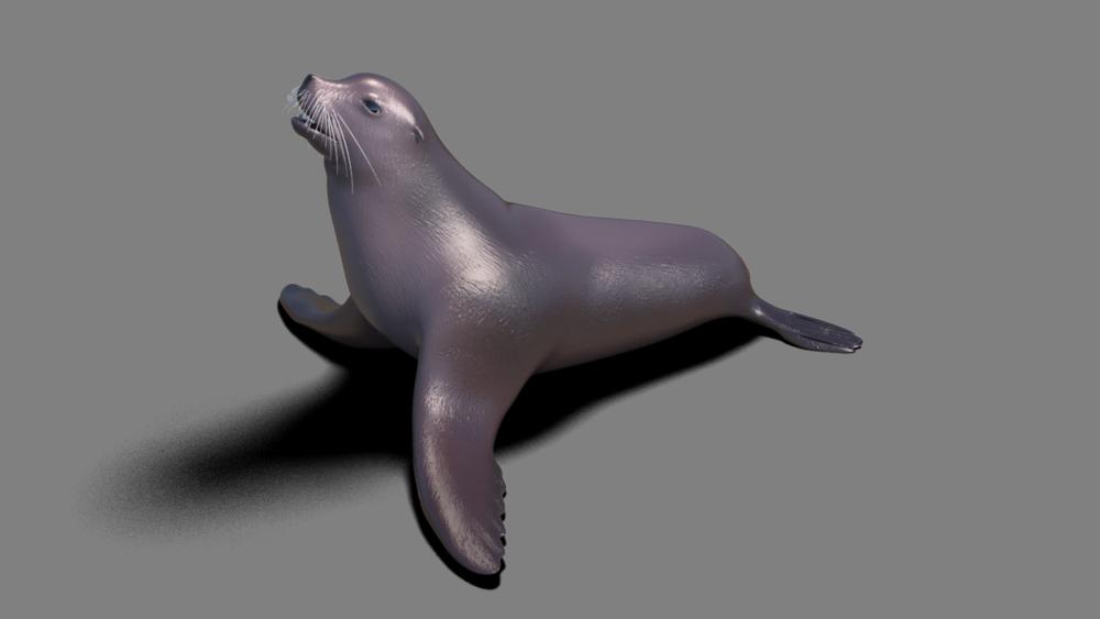 Modélisation d'un lion de mer