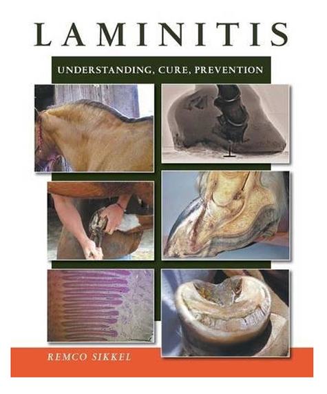 Laminitis-understanding-cure-prevention.jpg