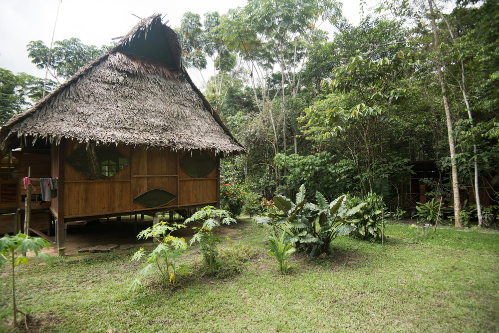 Rainforest Healing Center Peru by Dave Blake Photographer (077-peru).jpg
