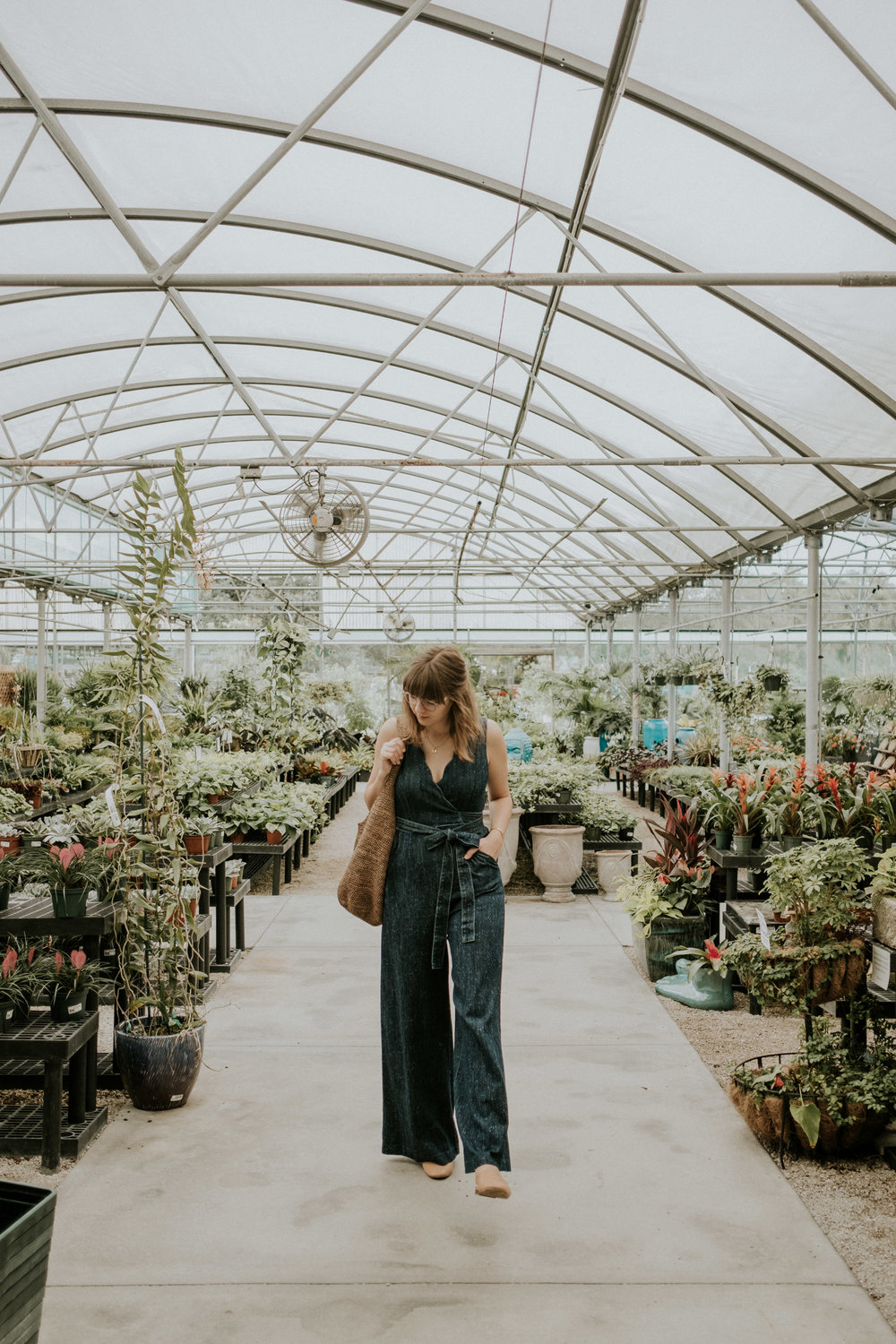Superbe First Stop: Driftwood Garden Center In Estero, FL. (My Favorite Garden  Center For Its Super Diverse Plant Selection And Pretty Space!)