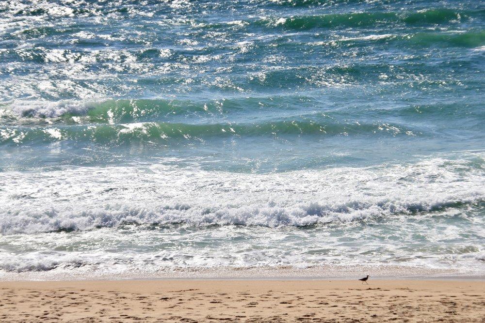 Katzman Beach Day 012.JPG