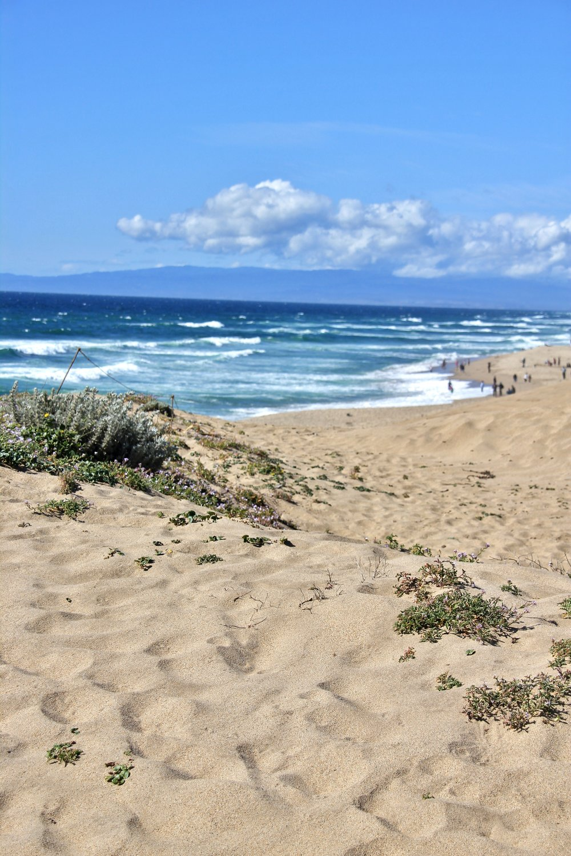 Katzman Beach Day 025.JPG