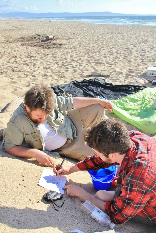 Katzman Beach Day 138.JPG