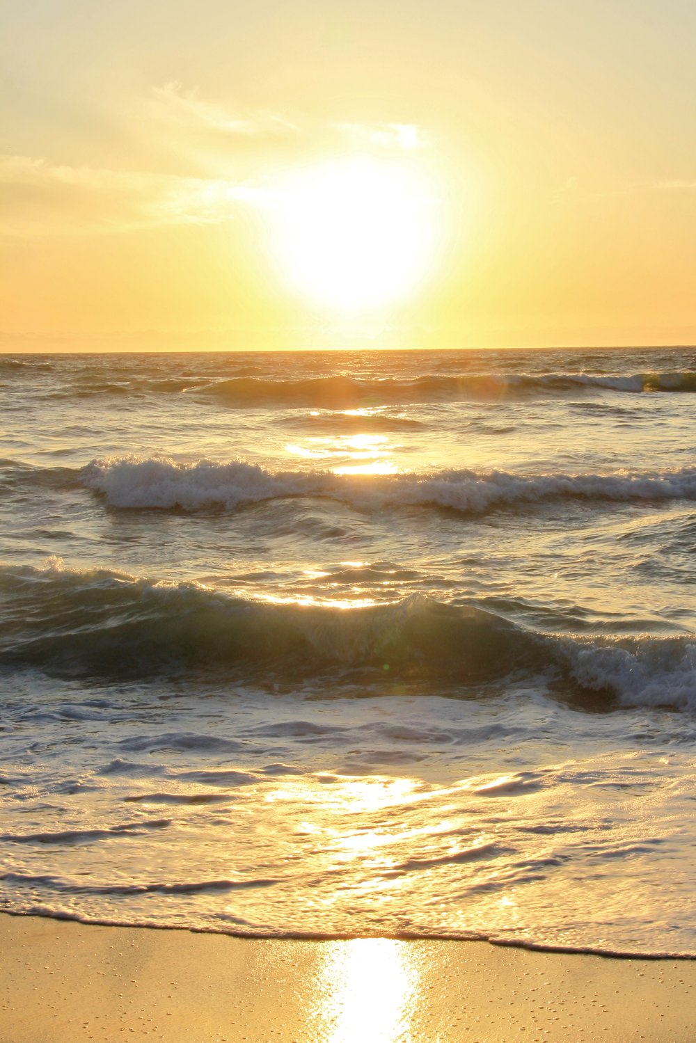 Katzman Beach Day 256.JPG