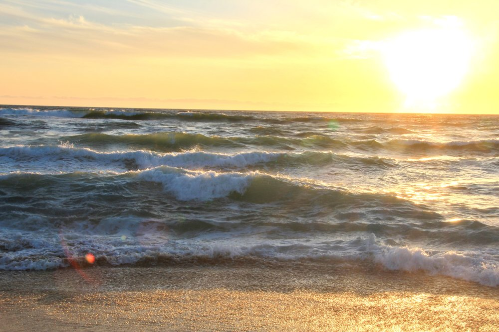 Katzman Beach Day 259.JPG