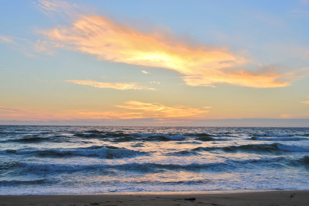 Katzman Beach Day 322.JPG