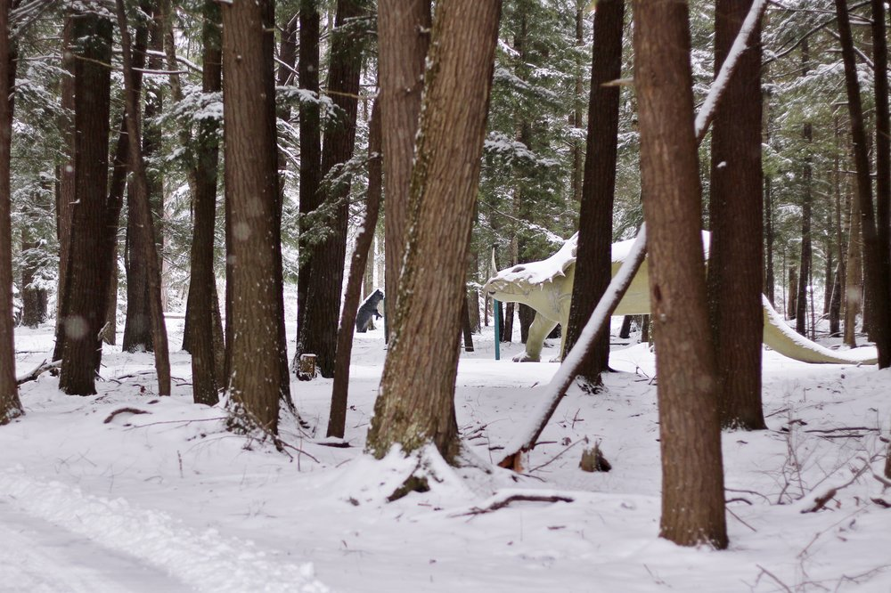 Dinosaur Gardens in the Snow (3).JPG