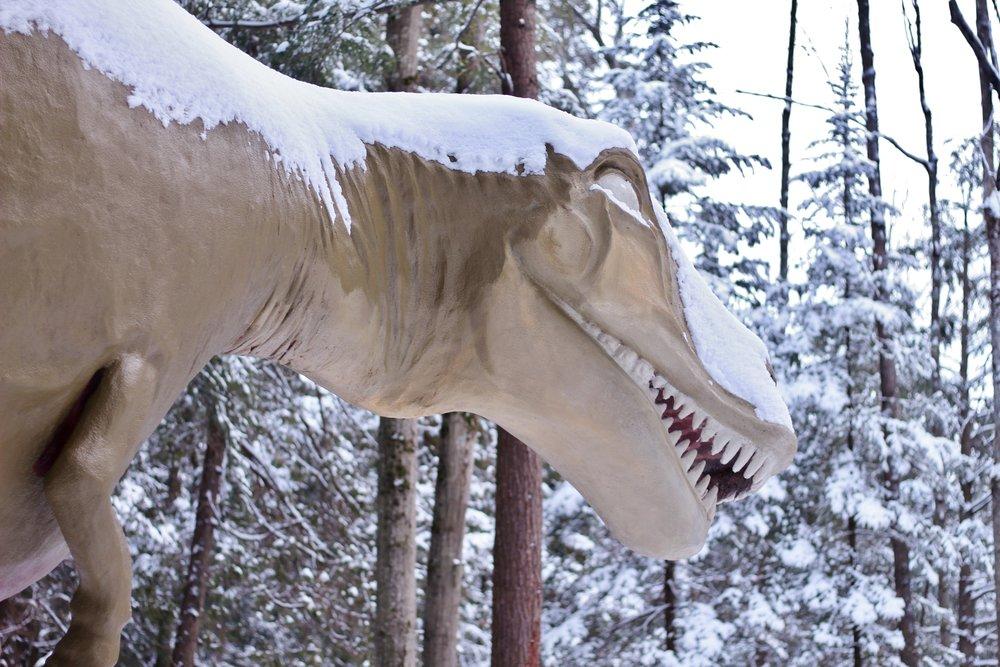 Dinosaur Gardens in the Snow (25).JPG