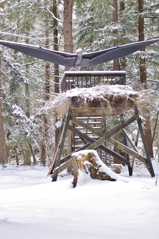 Dinosaur Gardens in the Snow (14).JPG