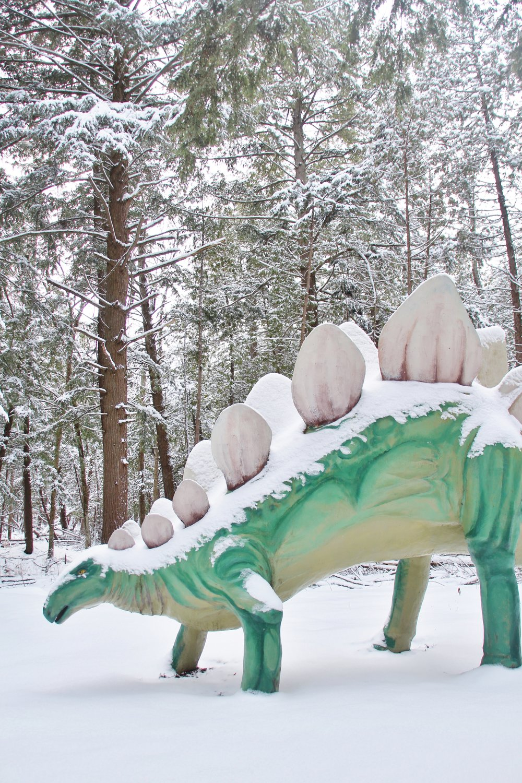 Dinosaur Gardens in the Snow (18).JPG