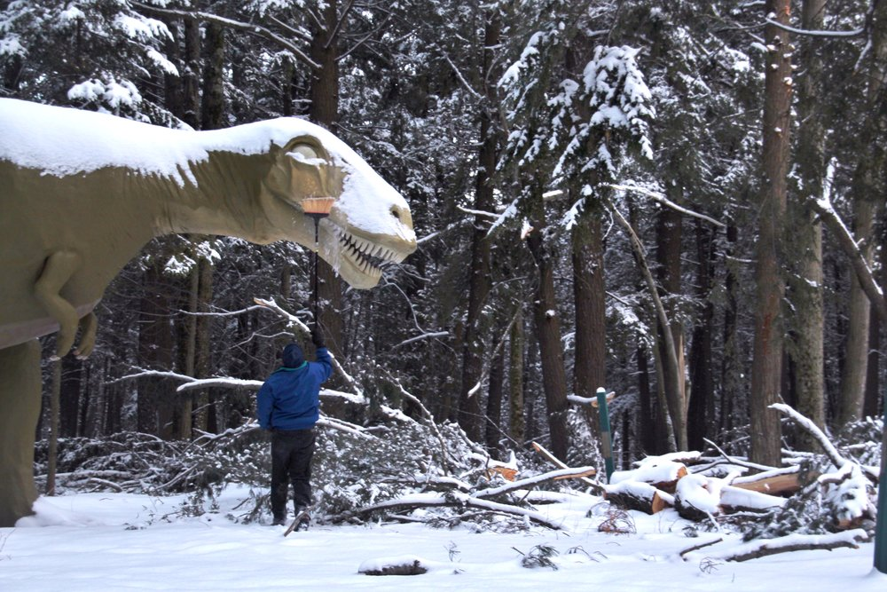 Behind the Scenese at Dinosaurs in the Snow (9).JPG