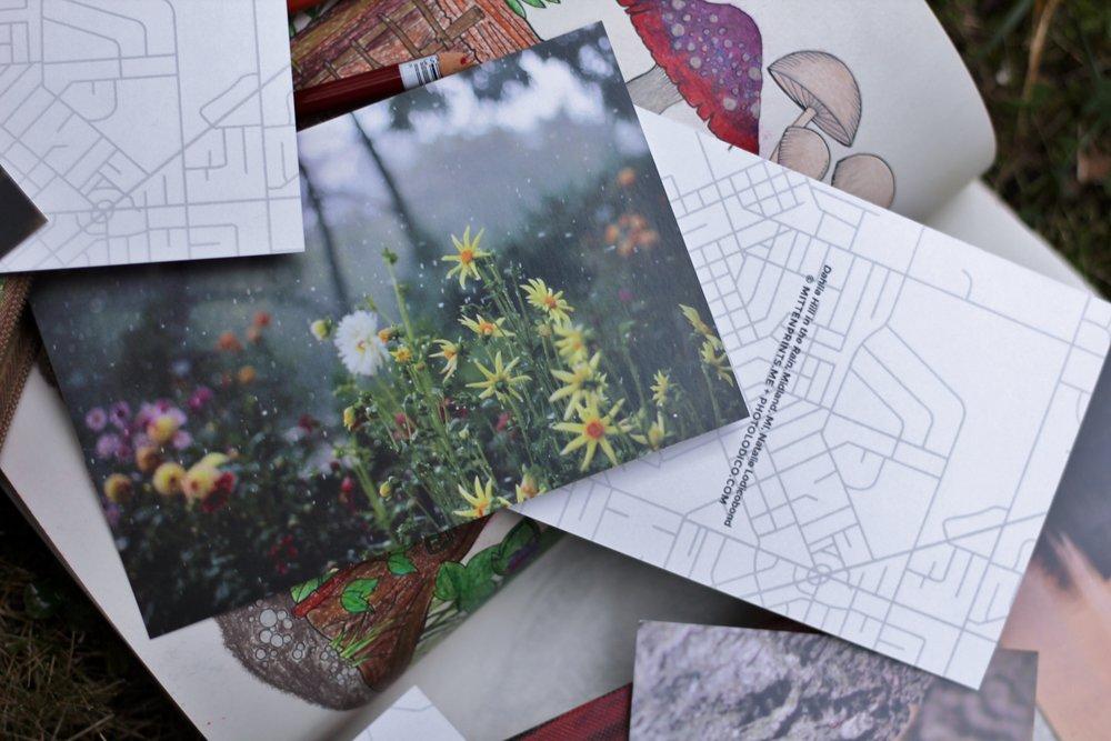 Mittenprints Fall Product Shoot (7).JPG