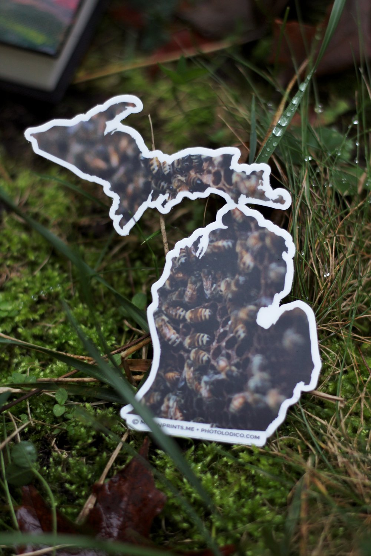 Mittenprints Fall Product Shoot (13).JPG