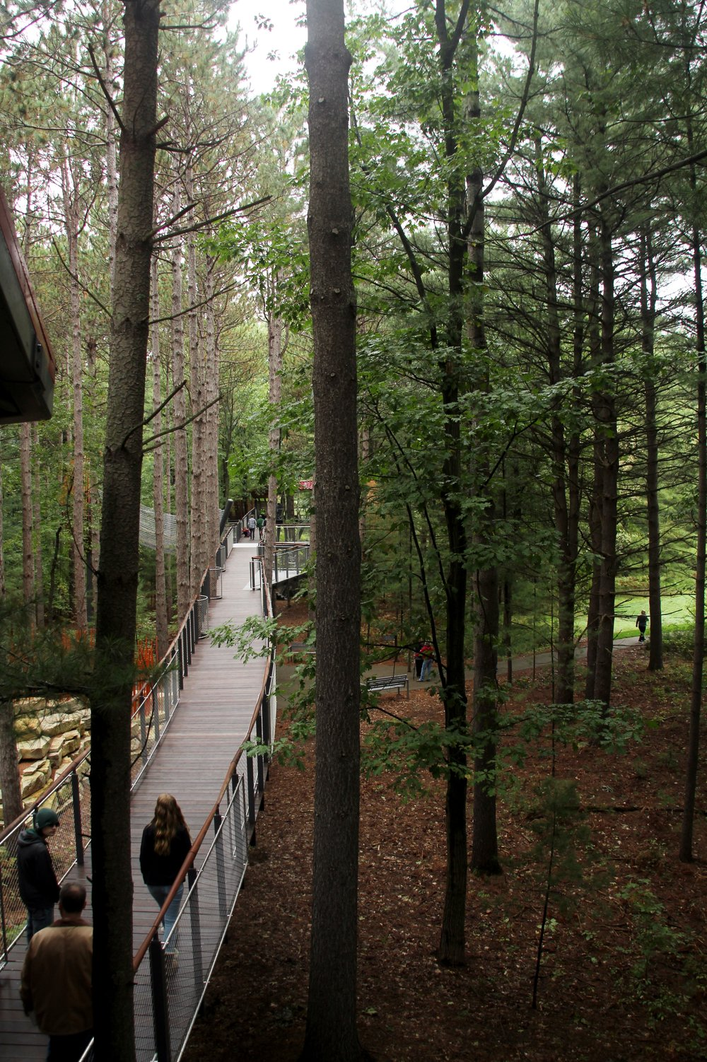 Whiting Forest Employee Preview Event (92).JPG