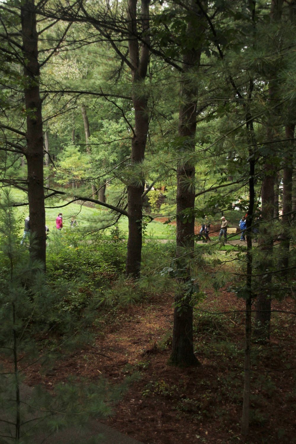 Whiting Forest Employee Preview Event (116).JPG