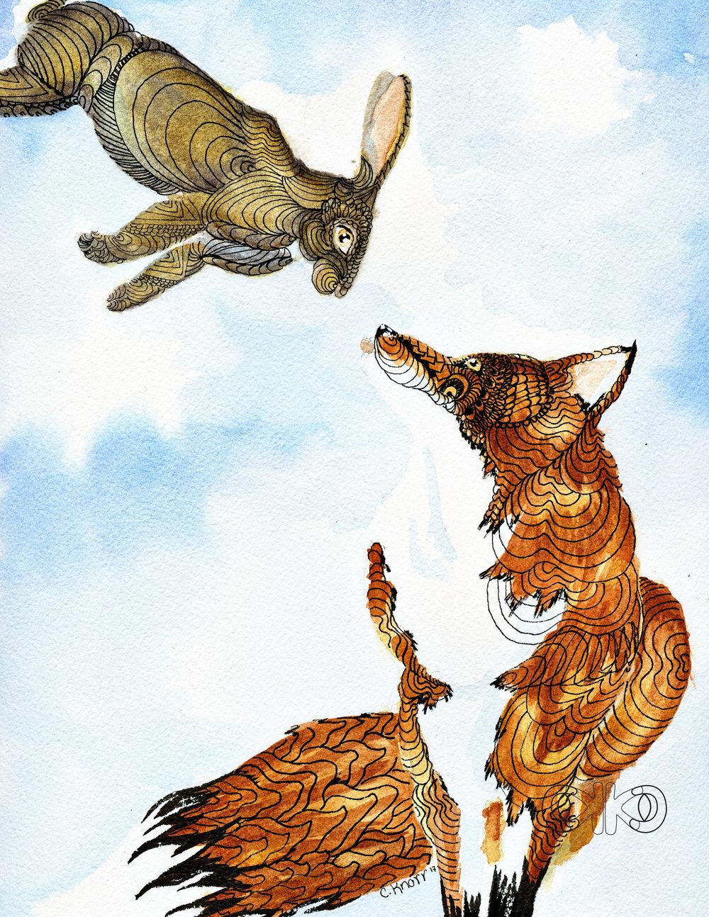 fox8.jpg