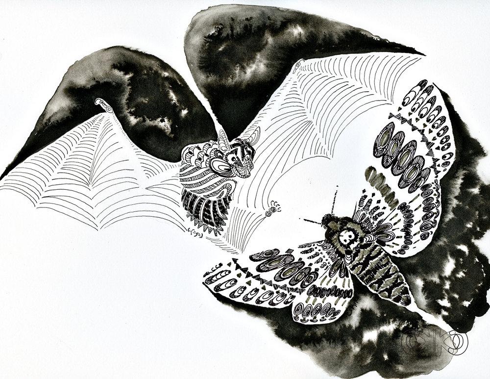bat11.jpg