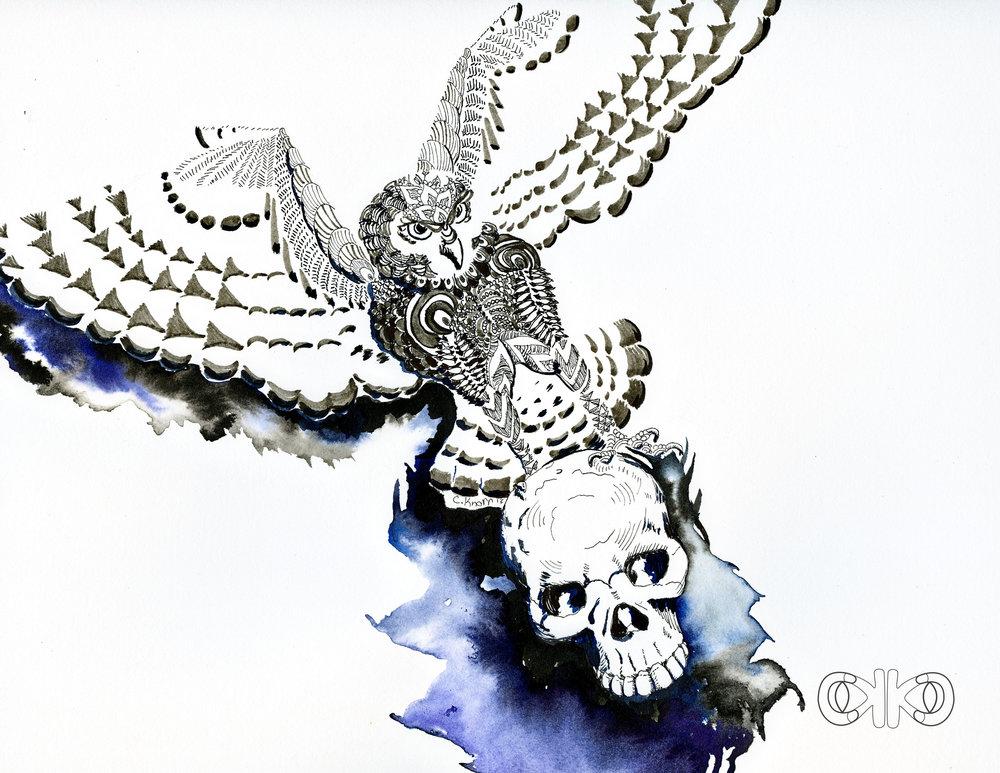 owl11.jpg