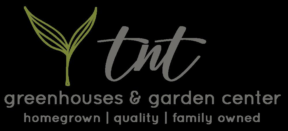 tnt_main_logo.png
