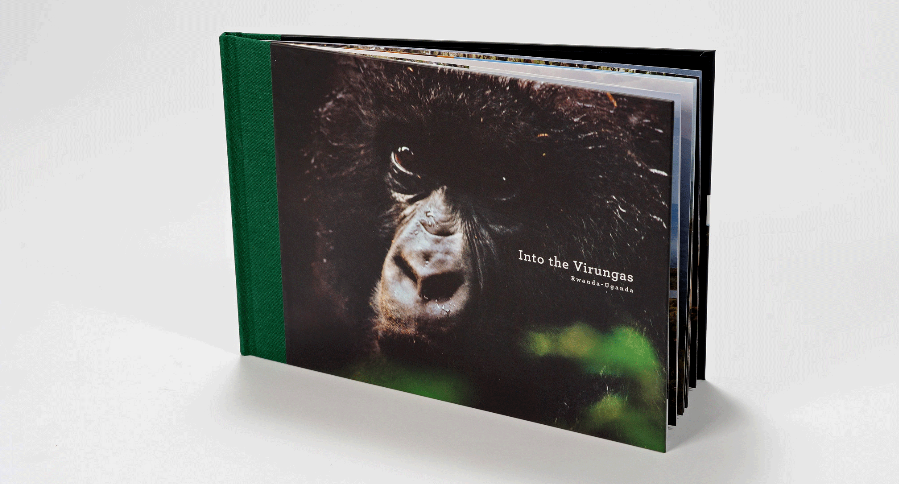 Volcanoes Safaris We commissioned photography, wrote and designed a hard-back book for this conservation tourism company focusing on gorillas in Rwanda.