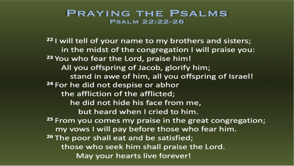 Psalm 22 (Scripture)