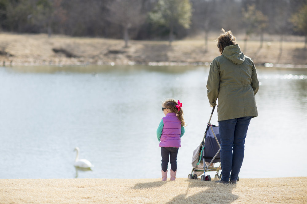 In this photo below my mom was showing my daughter a swan that landed in the pond.