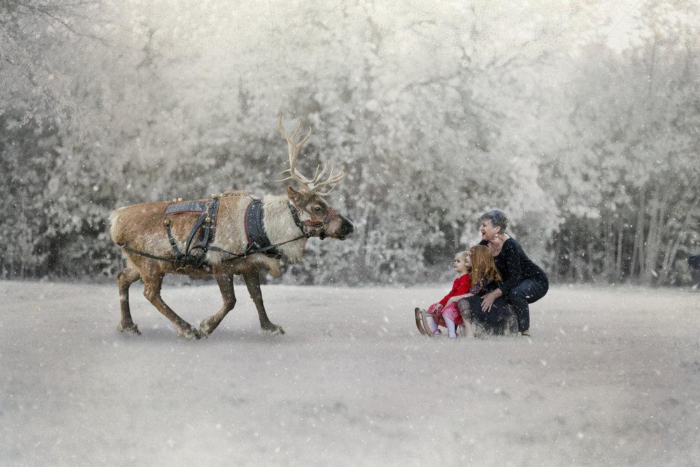 Flusche Reindeer Session 10212018 (1).jpg