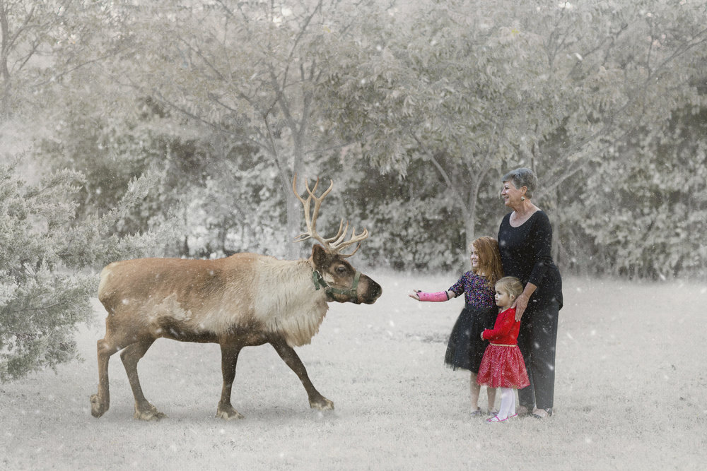 Flusche Reindeer Session 10212018 (2).jpg