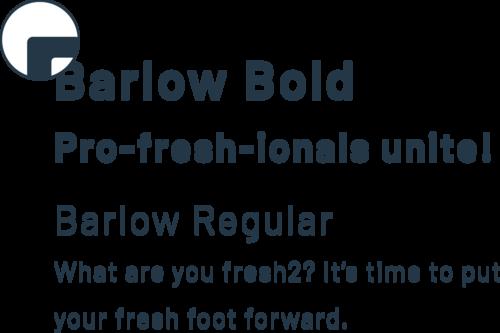 barlow google font