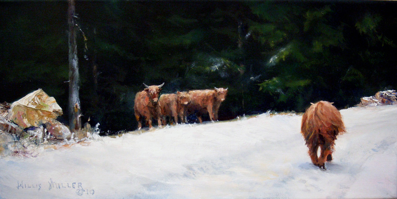 "Welcome Shaggy, 10"" x 20"", oil.  These cows were seen in Austria ."