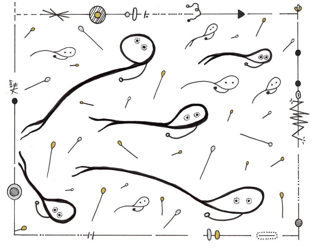 #3 tadpoles.jpg