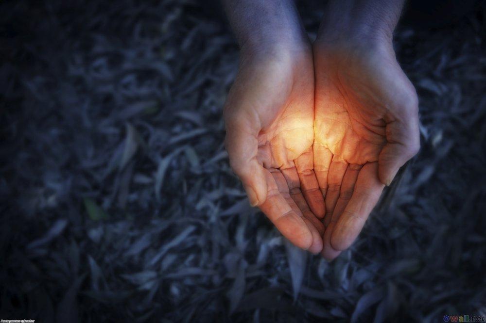 a_hand_of_light_in_the_dark_1698x1131.jpg