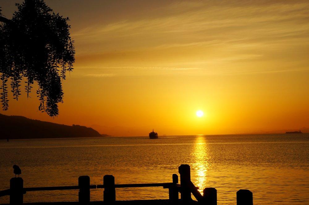 new-dawn.jpg