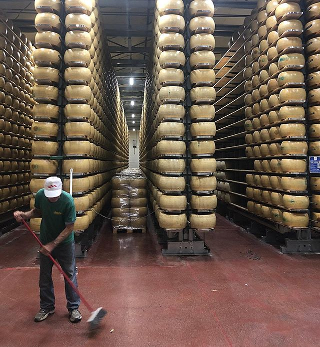 Parmigiano mecca. The aroma in here is 🔥 . . . #modena #italy #nodesks #travel #formaggio #cheese #organic #radunoexperience